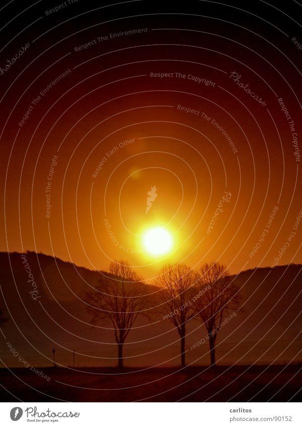 Klimawandel Ferien & Urlaub & Reisen Sommer Baum rot Berge u. Gebirge Wärme orange Wetter Nebel Hügel heiß Physik Abenddämmerung Süden