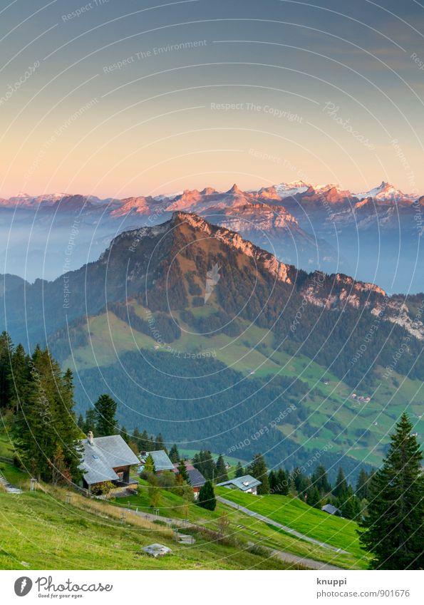 Rigi Scheidegg / Zentralschweiz Umwelt Natur Landschaft Feuer Himmel Horizont Sonne Sonnenaufgang Sonnenuntergang Sommer Herbst Klimawandel Schönes Wetter Wärme