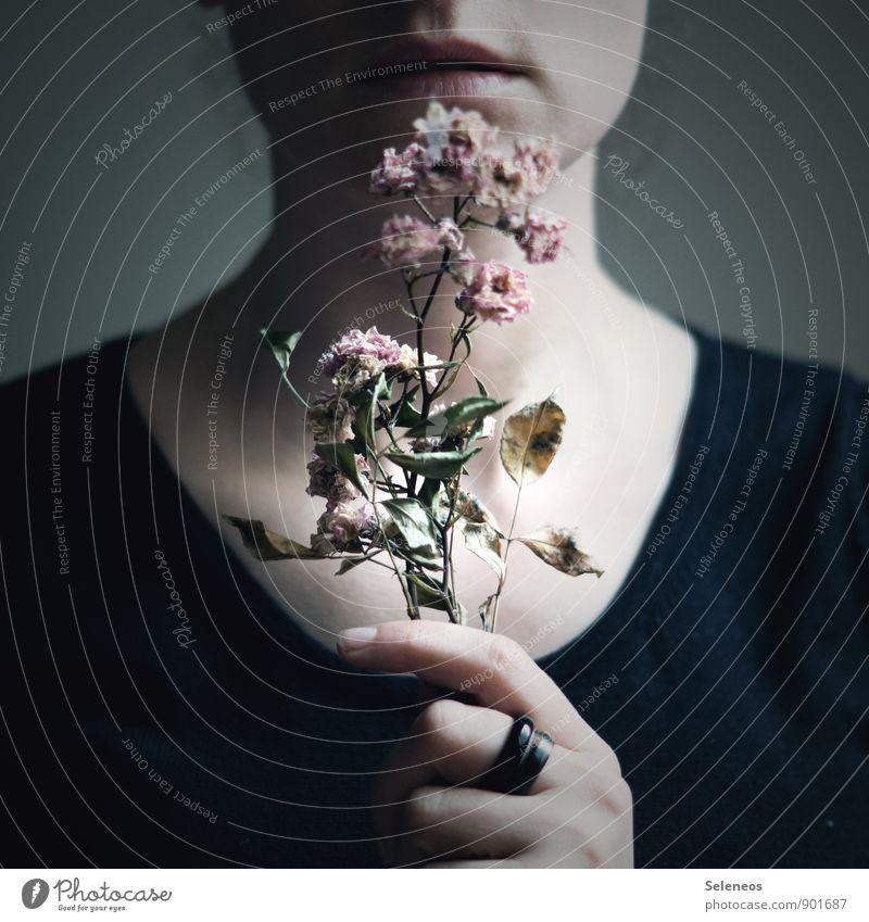 Erinnerung Mensch Mund Lippen Hand Finger 1 Herbst Blume Blatt Blüte Ring berühren Blühend Duft nah natürlich trocken Vergangenheit Vergänglichkeit vertrocknet