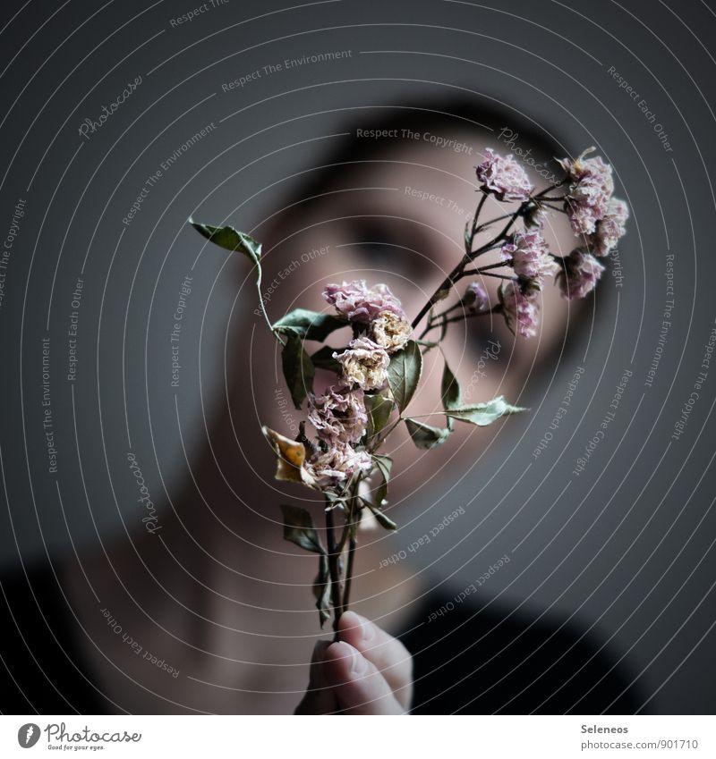 eleganter Knicks Mensch Frau Erwachsene Haare & Frisuren Gesicht 1 Umwelt Natur Herbst Blume Blatt Blüte dehydrieren nah natürlich trocken Gefühle Traurigkeit