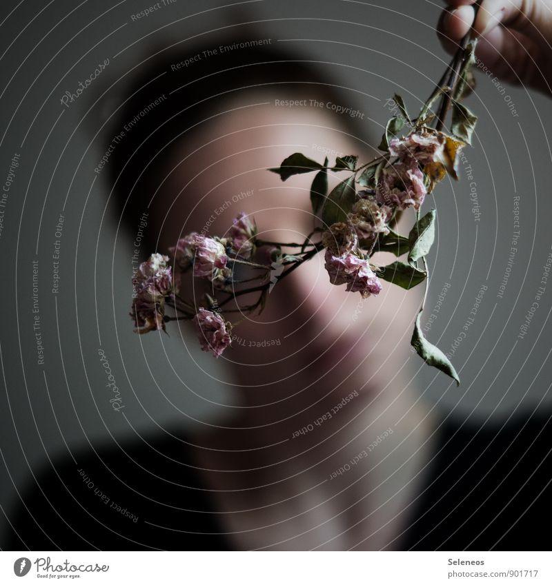 in Falten gelegt Mensch feminin Frau Erwachsene 1 Umwelt Natur Pflanze Blume Rose Blatt Blüte verblüht dehydrieren natürlich Traurigkeit Trauer Einsamkeit
