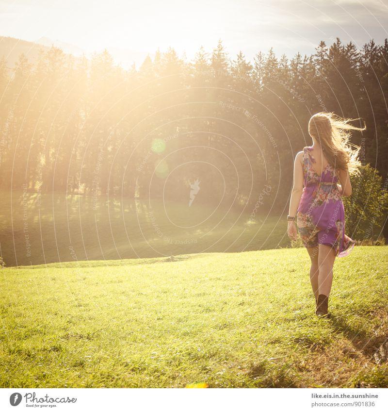 Hey Herbst. feminin schön Kleid Frau Wiese herbstlicht Spaziergang Farbfoto