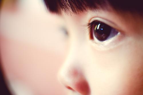 Iris Kleinkind Auge 1 Mensch 3-8 Jahre Kind Kindheit beobachten leuchten nah ruhig Mittelpunkt Konzentration Reflexion & Spiegelung Blick weich Brennpunkt