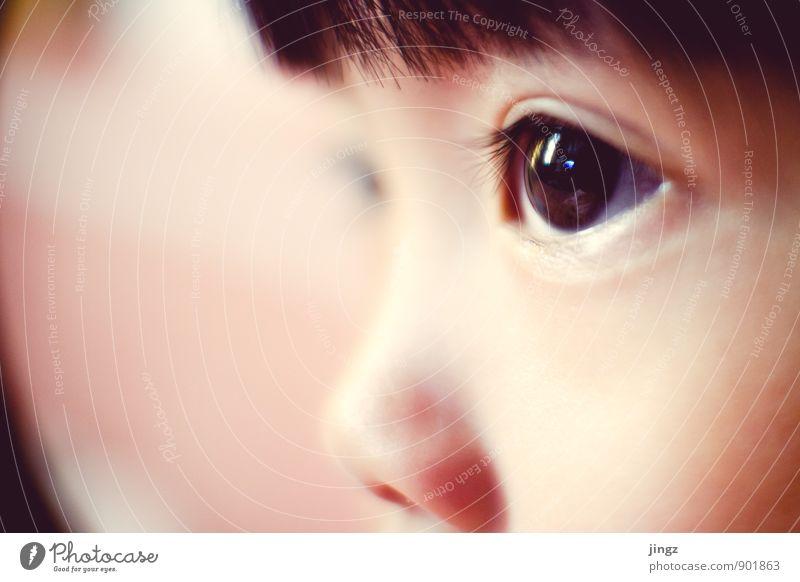 Iris Mensch Kind ruhig Auge leuchten Kindheit beobachten weich Konzentration nah Kleinkind Mittelpunkt Brennpunkt 3-8 Jahre