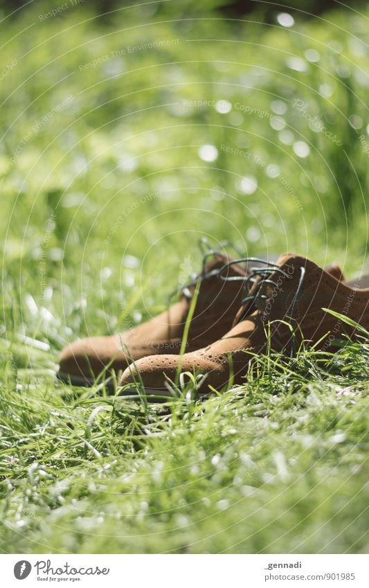 Erholungsgebiet grün Wiese braun Schuhe Bekleidung Pause Barfuß Seelenverwandtschaft