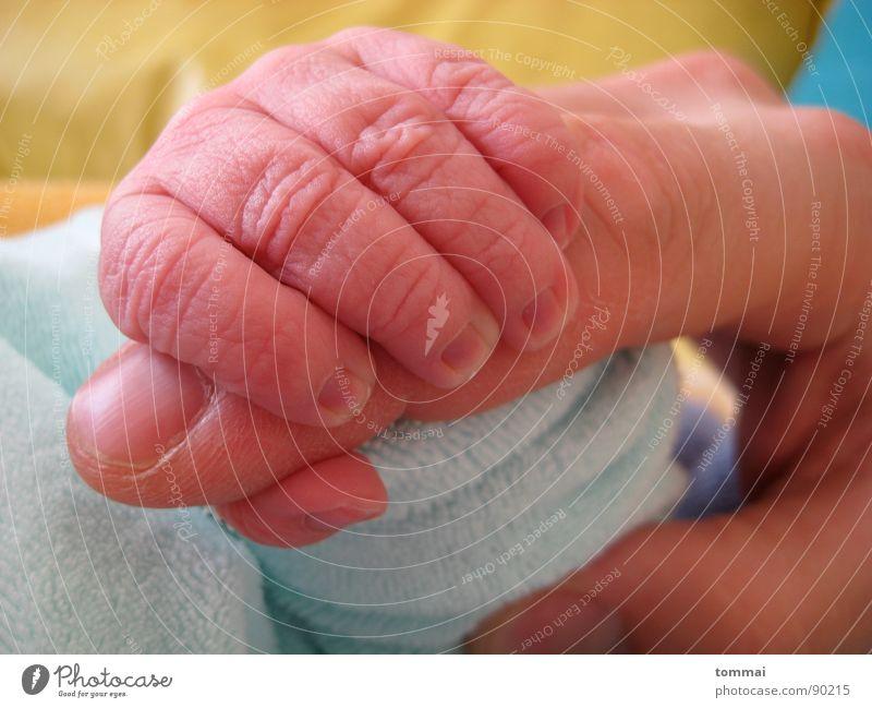 Fünf Finger Kind Baby rosa Vater Daumen Hand Gesellschaft (Soziologie) Geburt Kleinkind Mutter Zeigfinger blau Detailaufnahme Liebe Glück Mann
