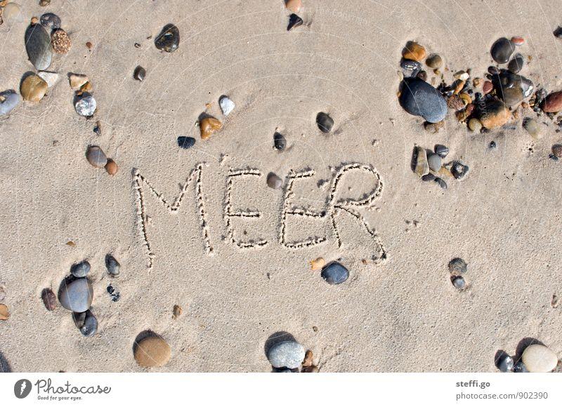 Tag am Meer Ferien & Urlaub & Reisen Sommer Erholung Strand Ferne Küste Freiheit Stein Sand Idylle Tourismus Schriftzeichen Ausflug Abenteuer Zeichen