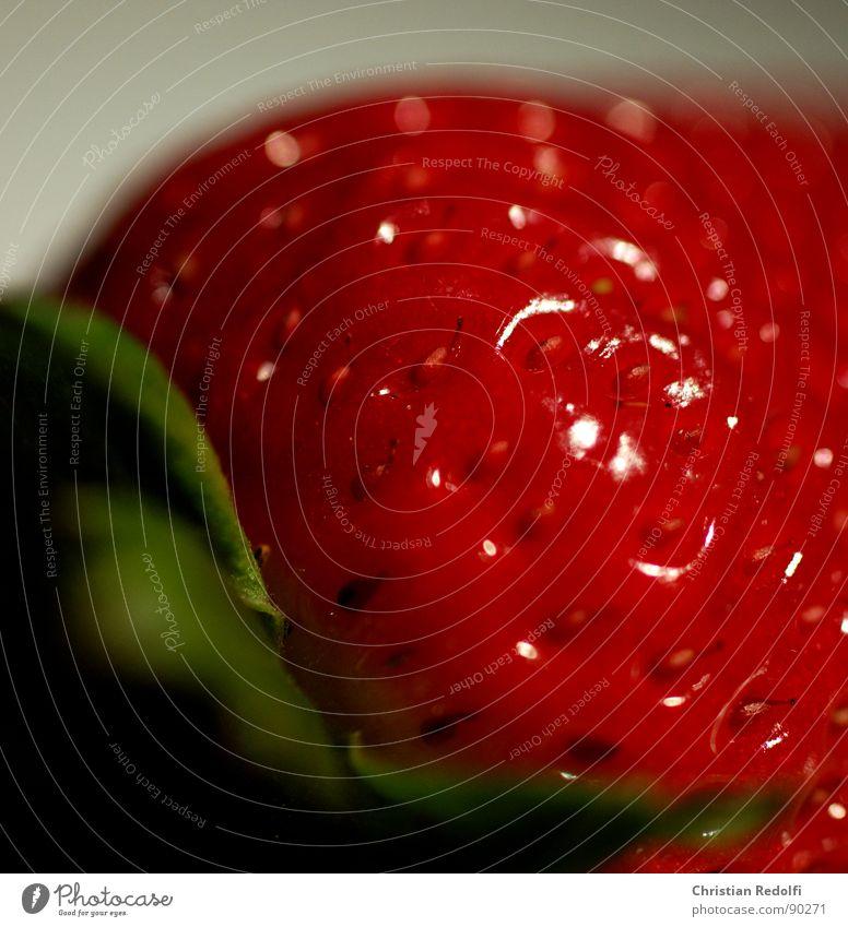 Strawberry 2 rot grün weiß Makroaufnahme Erdbeeren Frucht Fruchtfleisch Ernährung süß Nahaufnahme macrophotography Lebensmittel Pflanze