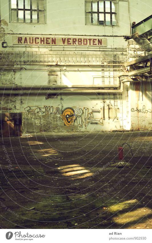 Geduld | länger leben. Fenster Wand Innenarchitektur Architektur Mauer Gebäude Fassade Wachstum Perspektive Armut Wandel & Veränderung Vergänglichkeit