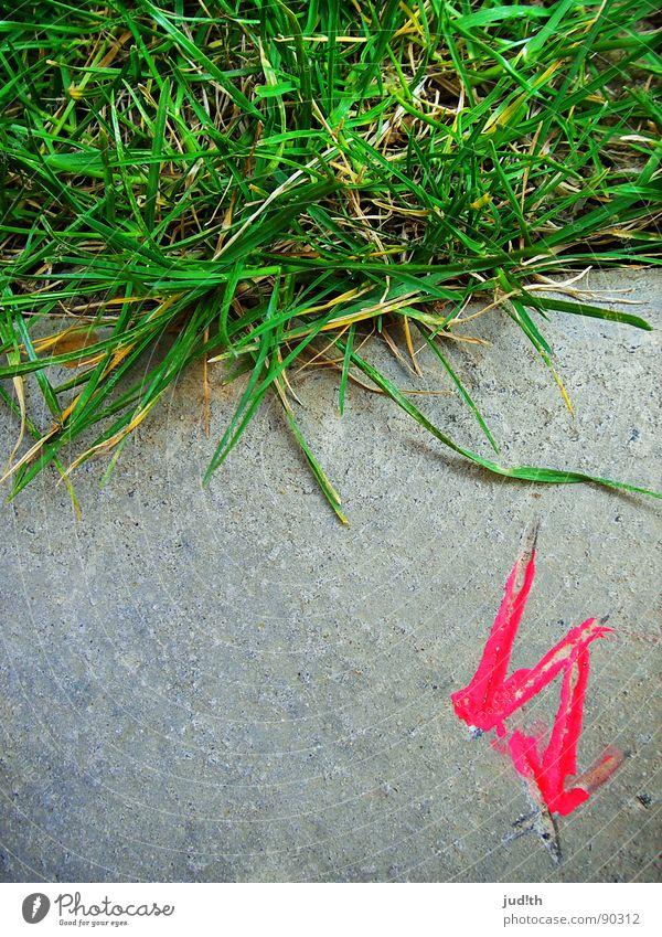 Gewitter Gras Blitze Beton grau rosa grün Wiese Halm Elektrizität gefährlich elektrisch Warnhinweis Warnschild Stein Rasen Zeichen Wetter Pfeil