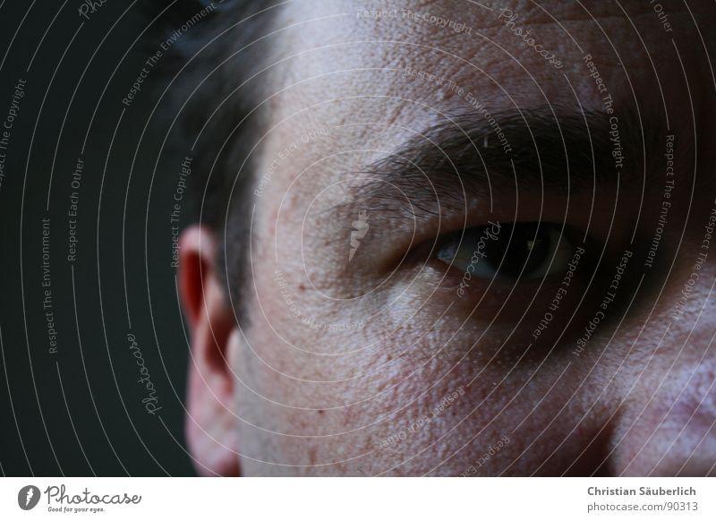 ME, MYSELF & EYE II Augenbraue Nasenloch Nasenbein Porträt Stirn Mann Ohr Haare & Frisuren Haut Ich selbst Falte