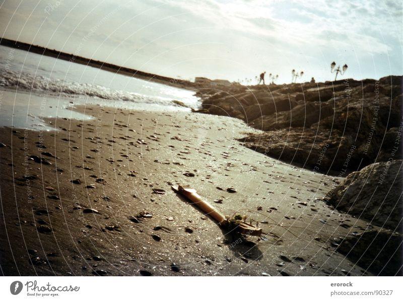 Saintes Maries de la Mer Sonne Meer Winter Strand ruhig Farbe Sand Erde Ende analog Gitarre Frankreich Süden