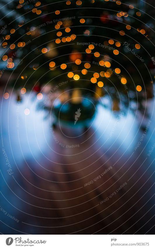 o tannenbaum 2 Ferien & Urlaub & Reisen Weihnachten & Advent Winter Feste & Feiern Bodenbelag Geschenk Weihnachtsbaum Vorfreude Winterurlaub