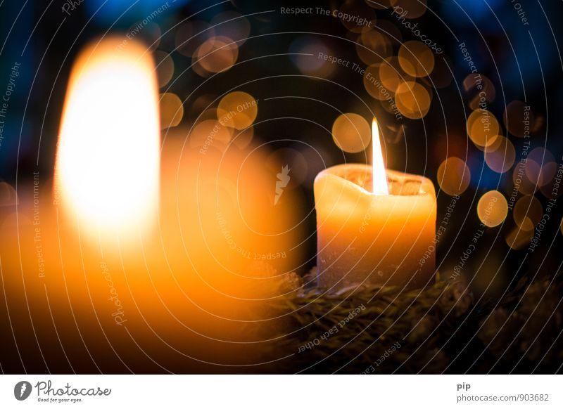 2. advent Kerze Kitsch Krimskrams Wärme blau Romantik Weihnachten & Advent Kerzenschein Unschärfe glänzend festlich Dekoration & Verzierung Adventskranz Wachs