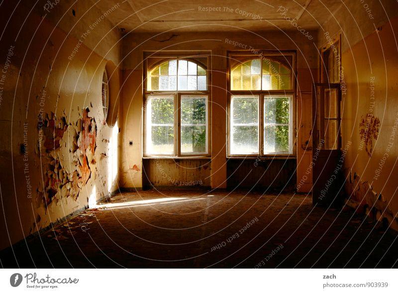 nur noch überstreichen Häusliches Leben Wohnung Haus Renovieren Innenarchitektur Raum Wohnzimmer Schlafzimmer Ruine Gebäude Architektur Mauer Wand Fassade