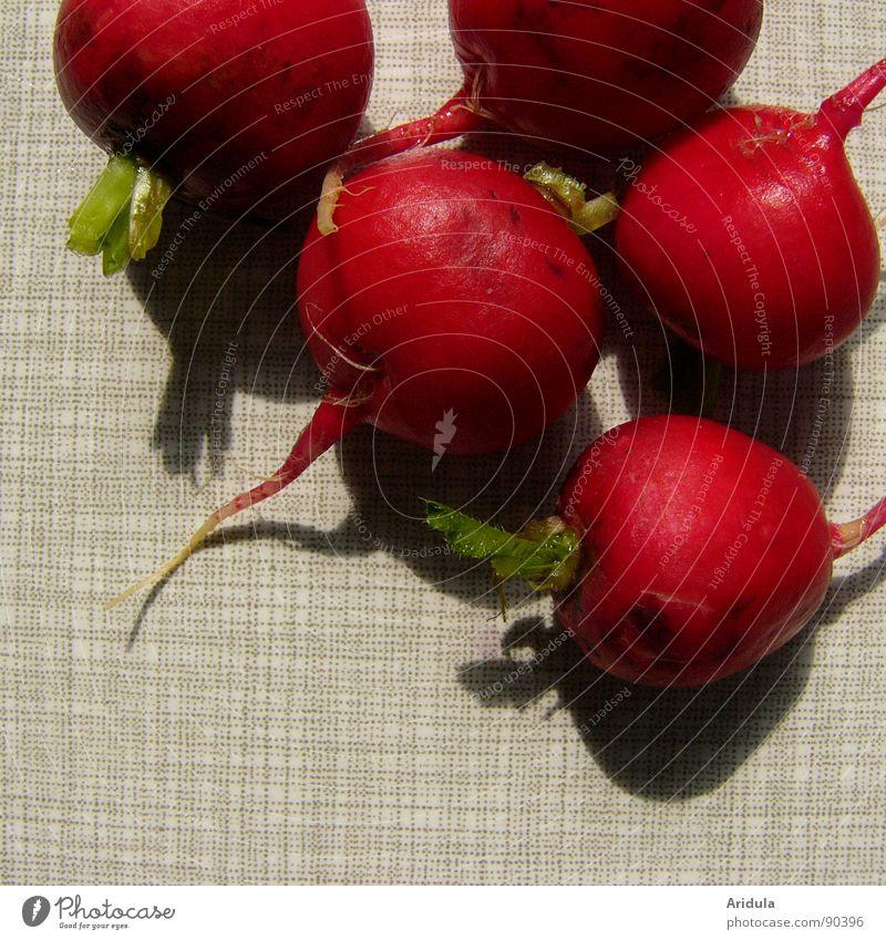 radischen No.1 grün rot Ernährung Gesundheit Tisch Küche rund Gemüse Vegetarische Ernährung
