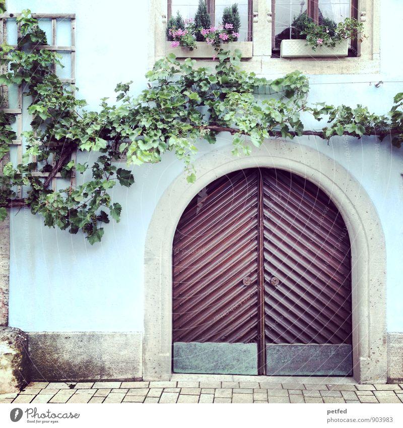 Häusliche Ansichten XI alt blau Pflanze schön grün Sommer Baum Haus Fenster Wand Mauer Gebäude grau Holz Stein braun