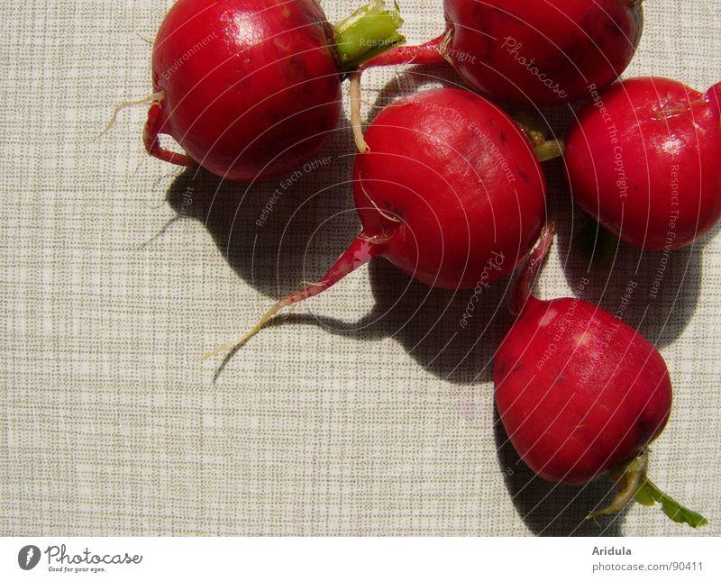 radischen No.4 rot rund grün Gesundheit Tisch Küche Gemüse Vegetarische Ernährung Schatten Wurzel