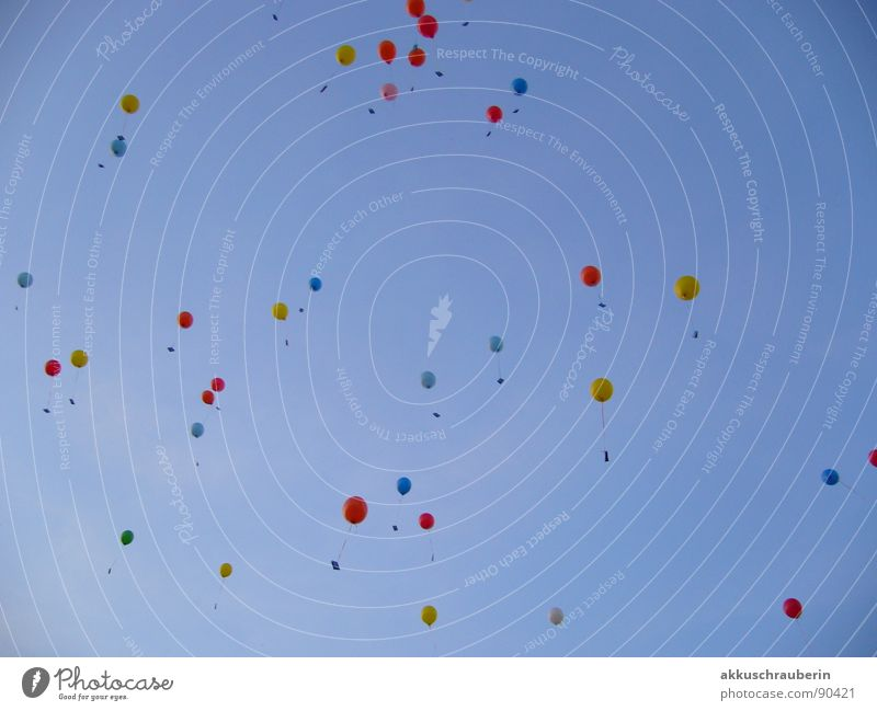 Bunte Luftballons am Himmel mehrfarbig Himmel blau Freude Leben Frühling Freiheit fliegen hoch Luftballon Frieden Postkarte obskur
