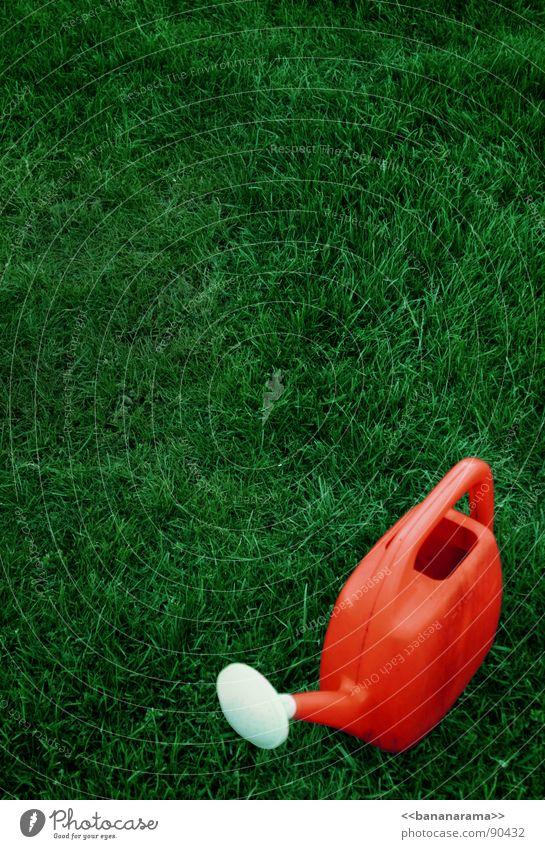 Rote Giesskanne Wasser rot Farbe Wiese Gras Bodenbelag Statue spritzen gießen zusätzlich liquide rot-grün