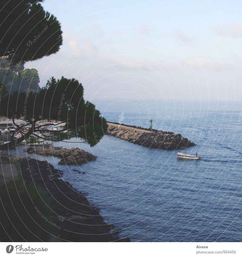 Heimkehr Ferien & Urlaub & Reisen Meer Fischerboot Fischereihafen Landschaft Wasser Himmel Schönes Wetter Küste Bucht Mittelmeer Golf von Neapel Fischerdorf