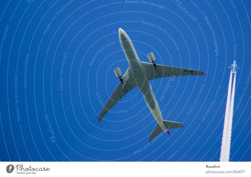 ...die sind eine etage höher Himmel Ferien & Urlaub & Reisen oben Luft fliegen Beginn Flugzeug Geschwindigkeit Luftverkehr Streifen Ziel unten Schönes Wetter