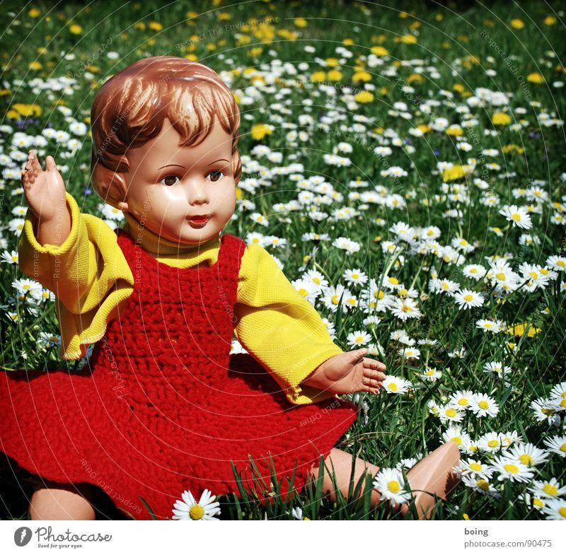 Gimme gimme, gimme just a little smile, that's all I ask of you Einsamkeit Wiese Frühling Kleid Spielzeug Blühend Löwenzahn Puppe Abschied Gänseblümchen Picknick Blumenwiese winken Gruß Hinweis Hallo