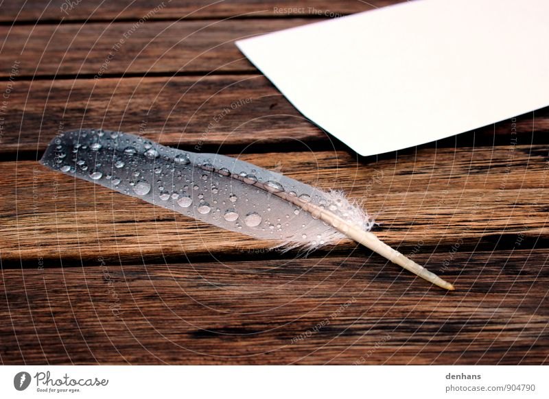 Nasse Feder schreiben Tisch lernen Kunst Künstler Wasser Wassertropfen Regen Schreibwaren Papier Schreibfeder Holz Tropfen zeichnen Traurigkeit alt nass braun