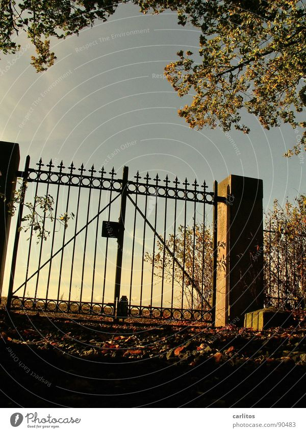 Verschlossen I Himmel ruhig Herbst Tod Traurigkeit Stimmung Religion & Glaube Trauer Frieden Ende Vergänglichkeit Unendlichkeit Tor Verzweiflung Ruhestand Pfosten