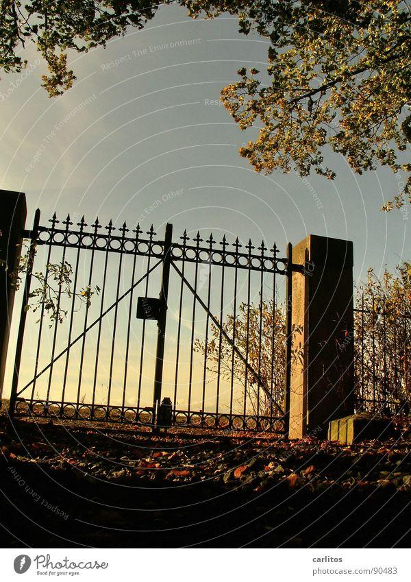 Verschlossen I Himmel ruhig Herbst Tod Traurigkeit Stimmung Religion & Glaube Trauer Frieden Ende Vergänglichkeit Unendlichkeit Tor Verzweiflung Ruhestand