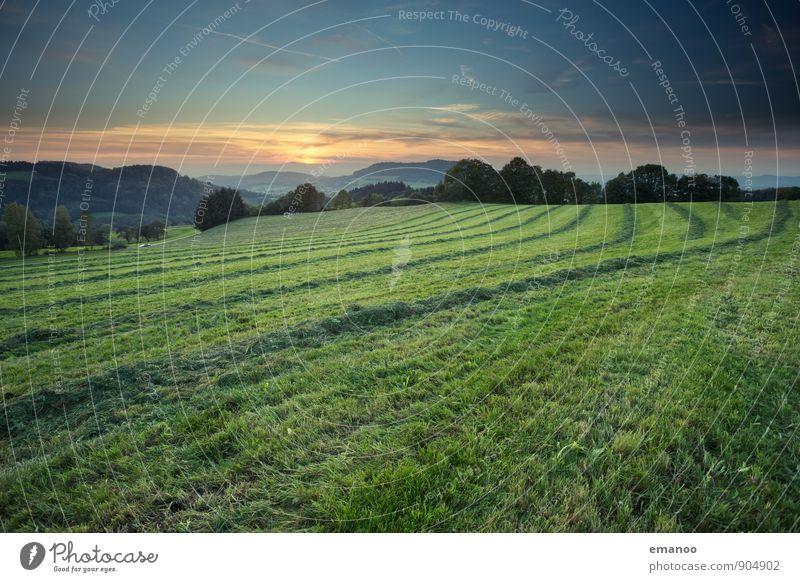 landscape lines Himmel Natur Ferien & Urlaub & Reisen Pflanze grün Landschaft Ferne Berge u. Gebirge Herbst Wiese Gras natürlich Freiheit Linie Horizont Wetter
