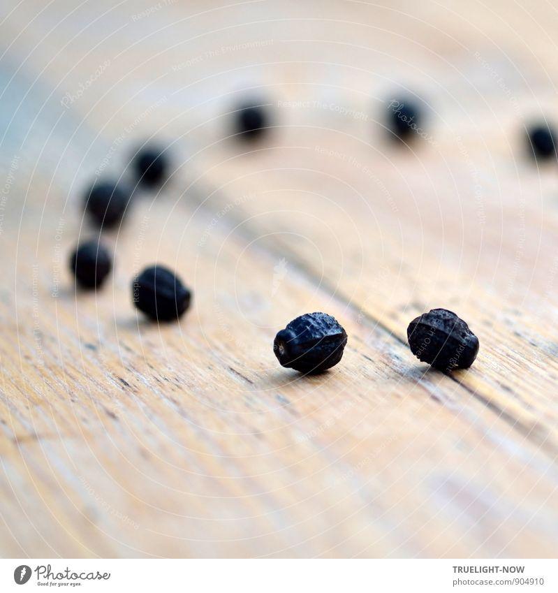 """Ordnung - - - Natur Pflanze Urelemente Sommer exotisch """"Wunderblume Samen"""" Garten ästhetisch elegant glänzend klein natürlich rund Sauberkeit trocken braun grau"""