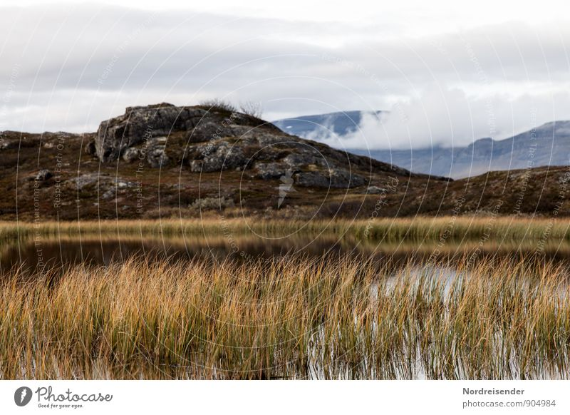 Bergsee Ausflug Ferne Berge u. Gebirge wandern Natur Landschaft Pflanze Urelemente Luft Wasser Himmel Wolken Klima Hügel Felsen Moor Sumpf See Erholung