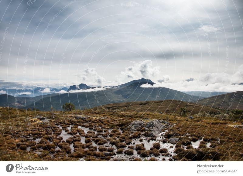 Hochmoor Ferien & Urlaub & Reisen Abenteuer Ferne Freiheit Berge u. Gebirge wandern Natur Landschaft Urelemente Himmel Wolken Klima Gipfel Moor Sumpf Fernweh