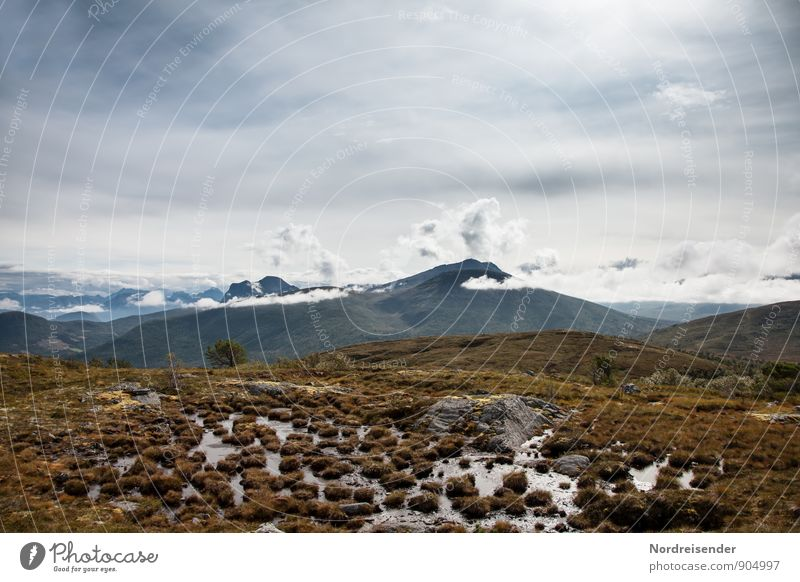 Hochmoor Himmel Natur Ferien & Urlaub & Reisen Einsamkeit Landschaft Wolken Ferne Berge u. Gebirge Wege & Pfade Freiheit Stimmung wandern Klima Urelemente