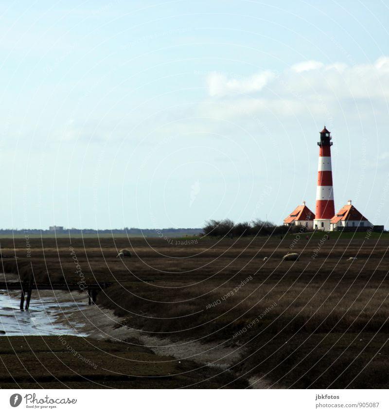 80 / Westerh(J)ever Leuchtturm Natur Pflanze Wasser Landschaft Tier Umwelt Herbst Küste Deutschland Europa Tiergruppe Brücke Urelemente Bier Denkmal Nordsee
