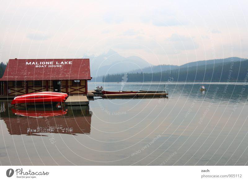 Ende der Saison Tourismus Ausflug Ferne Wassersport Kajak Kanu Kanadier Paddeln Rudern Ruderboot Wasserfahrzeug Steg Anlegestelle Wolken Sommer Herbst Baum Wald