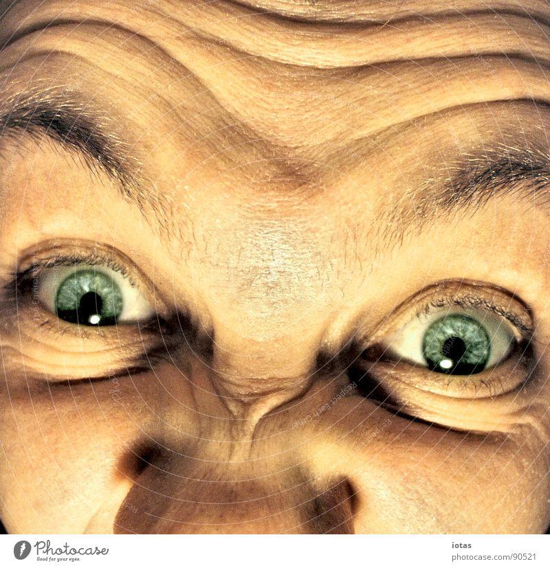 wahn Wahnsinn entdecken Porträt dumm Reaktionen u. Effekte verrückt Angst Panik Freude Kommunizieren gelbsucht grimmase Auge Gesicht perversion for profit