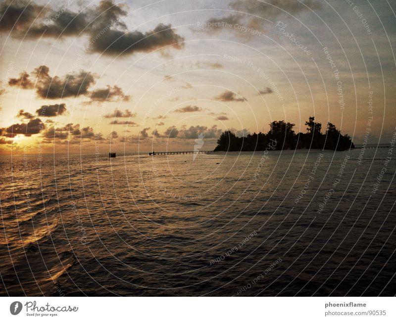 bathalla island Sonne Meer Sommer Ferien & Urlaub & Reisen Wolken Einsamkeit gelb braun Zusammensein Insel Romantik Asien Palme