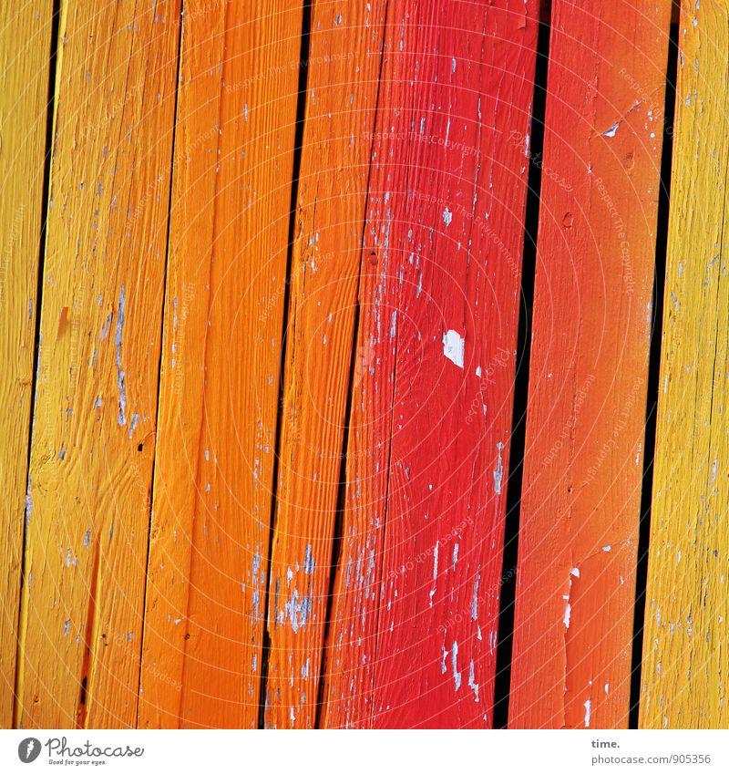 Saisonende Farbe Leben Holz träumen Ordnung Lebensfreude Vergänglichkeit kaputt Wandel & Veränderung Freundlichkeit Verfall trendy Schmerz Holzbrett trashig