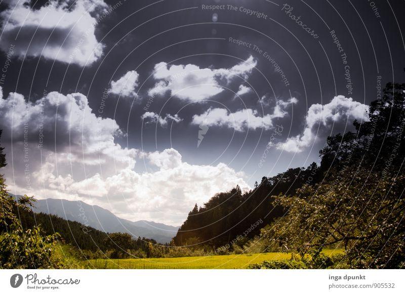 Feld, Wald und Wolken Umwelt Natur Landschaft Himmel Sommer Schönes Wetter Pflanze Baum Japan Kansai Honshu Tourismus Landwirtschaft Jahreszeiten Farbfoto