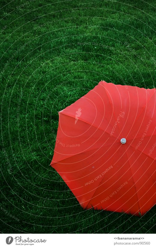Roter Schirm grün rot Wiese Gras Rasen einfach Schutz Regenschirm rot-grün