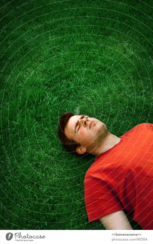 red green overkill grün rot Wiese Tod Gras schlafen Rasen Bodenbelag
