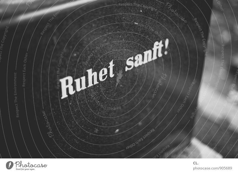 ruhet sanft Tod Schriftzeichen Vergänglichkeit Trauer Friedhof Grab Beerdigung Grabstein Grabmal beerdigen Grabinschrift