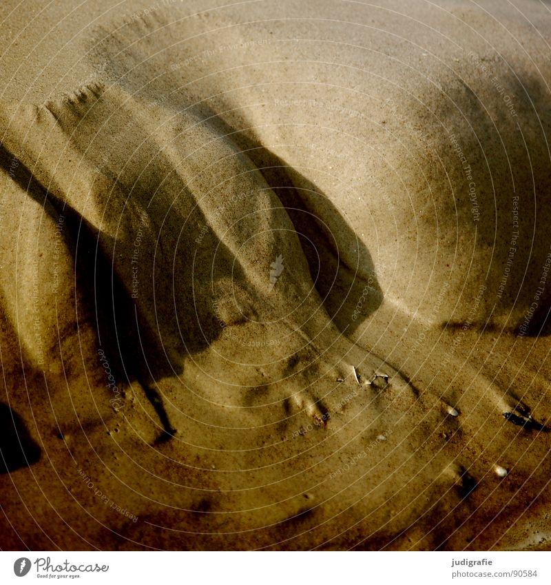 Strandlandschaft spülen Meer fließen fein Vergänglichkeit Küste Sand Wasser ausgespült Ostsee Berge u. Gebirge Tal berg und tal Fluss Strukturen & Formen