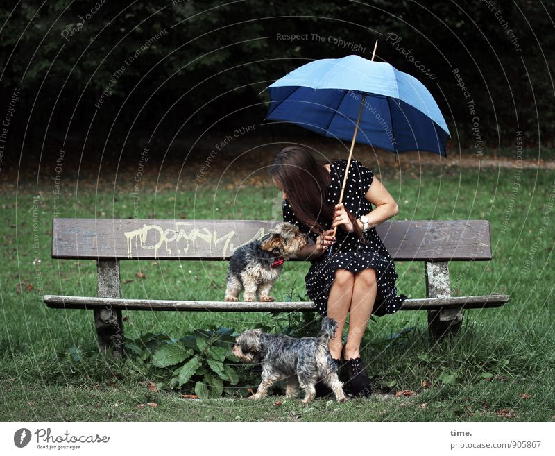 . Hund Mensch Jugendliche Tier 18-30 Jahre Wald Erwachsene Bewegung Wiese feminin Haare & Frisuren Freundschaft Park sitzen Kommunizieren Schönes Wetter
