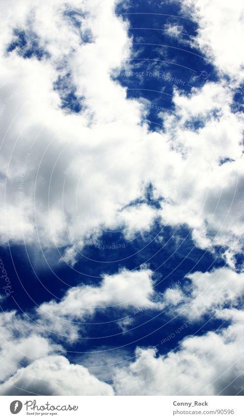 Wolkentapete Himmel weiß blau Sommer Luft Zufriedenheit Stimmung Wetter Wasserdampf Lamm azurblau