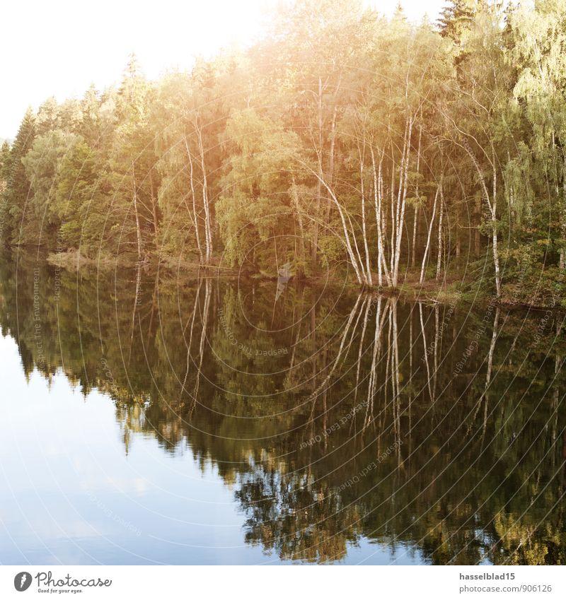 Land unter... Ferien & Urlaub & Reisen Wasser Sommer Erholung ruhig Strand Ferne Leben Schwimmen & Baden Glück Gesundheit See Zufriedenheit Tourismus wandern