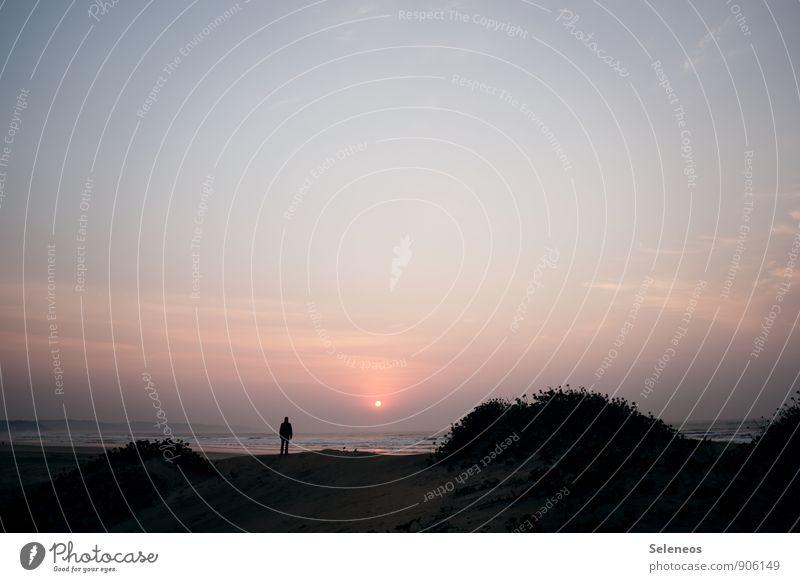 Guten Morgen Ferien & Urlaub & Reisen Tourismus Ausflug Abenteuer Ferne Freiheit Sonne Strand Meer Wellen Mensch 1 Umwelt Natur Landschaft Himmel Horizont Klima