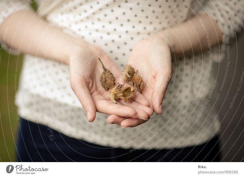 Herbstanfang. Mensch Natur Baum Hand Wald Umwelt Herbst feminin Garten braun Frucht Dekoration & Verzierung Finger Vergänglichkeit T-Shirt festhalten